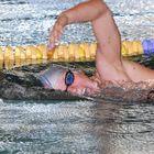 Militärschwimmweltmeisterschaften in Warendorf