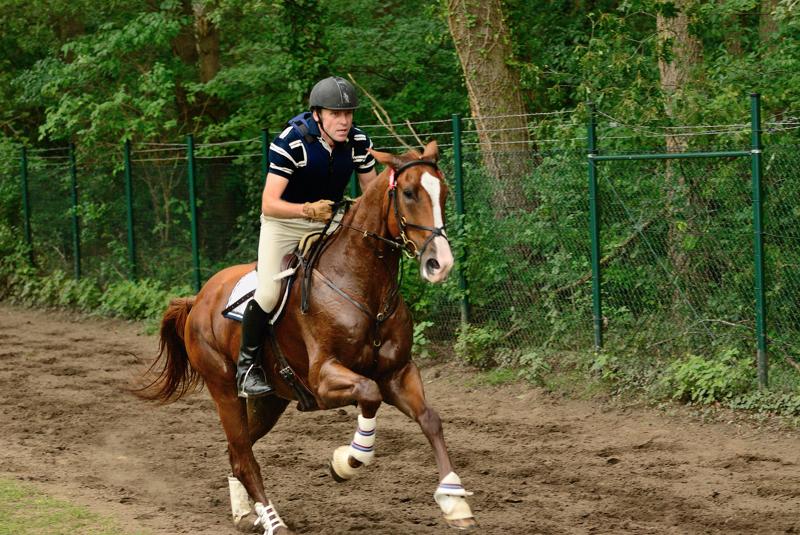 Military - Bundeschampionate in Warendorf