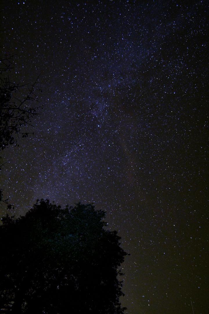 Milky Dream