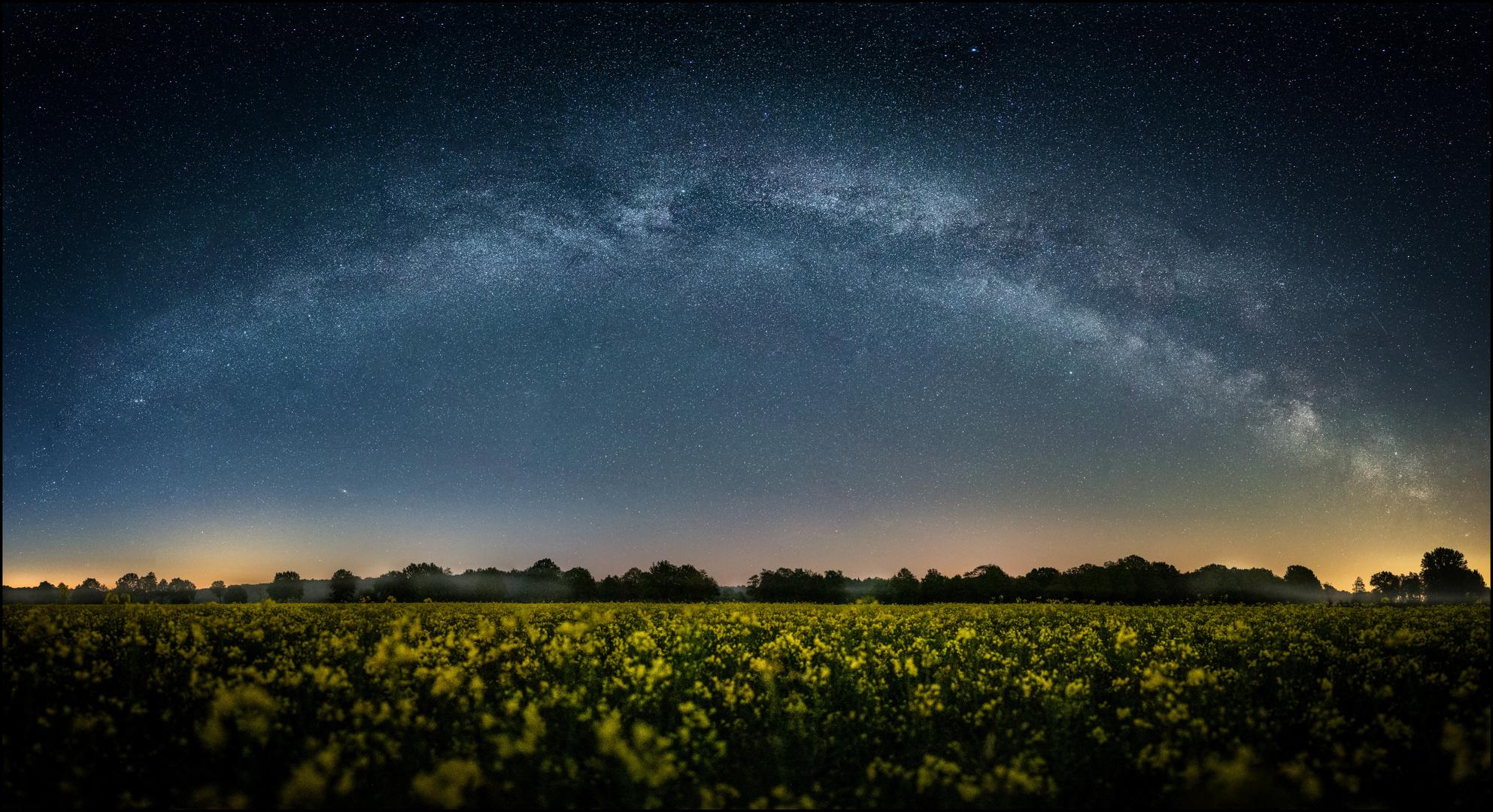 * Milky Way über Rapsblüte *