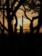 Millennium Tower und Papstkreuz