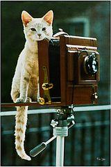 Mini als Fotografin  Wie dazumal