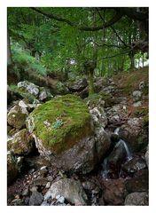 Mini-cascada en Arrazola