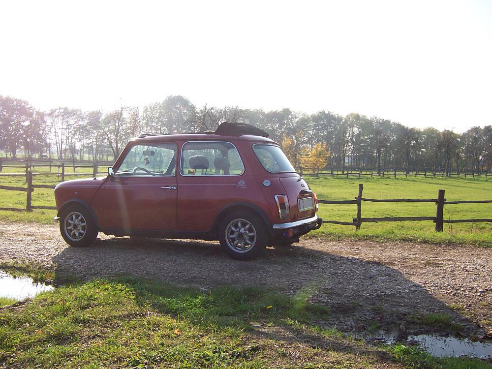 Mini in der Herbstsonne