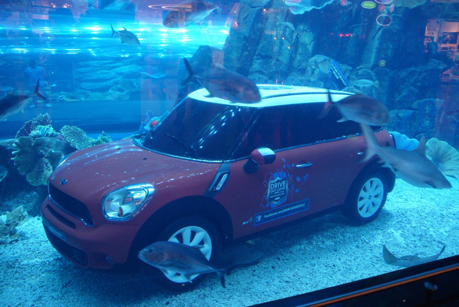Mini Underwater In Aquarium Foto Bild Autos Zweirader Pkw Verkehr Fahrzeuge Bilder Auf Fotocommunity
