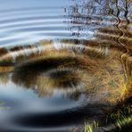 miroir d' automne