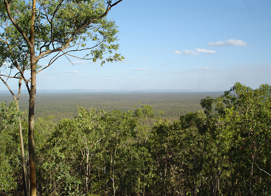 Mirray Lookout, I