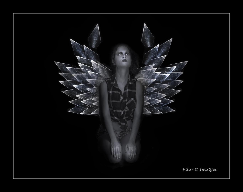 Mis alas de cristal