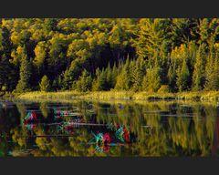 Mississagi Provincial Park 3-D