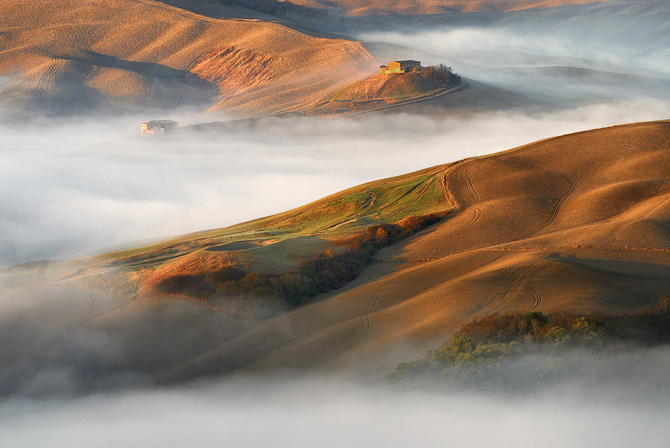 Mist and sunshine greeted the fields of Tuscany II