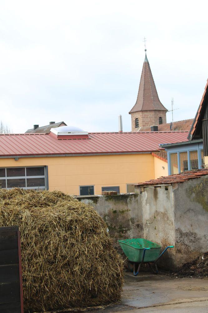 Misthaufen gehört zum Dorf wie die Kirche