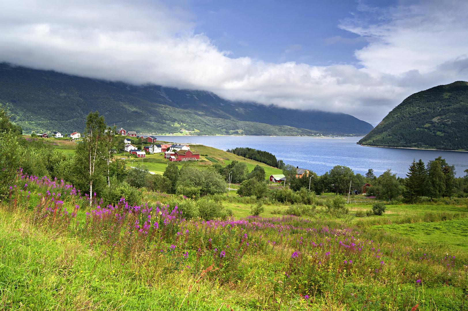 Misværfjord am Polarkreis
