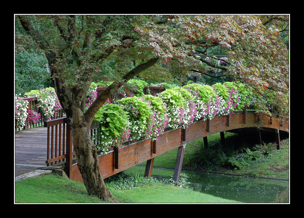 Mit Blumen gesäumte Brücke im Stadtgarten Karlsruhe