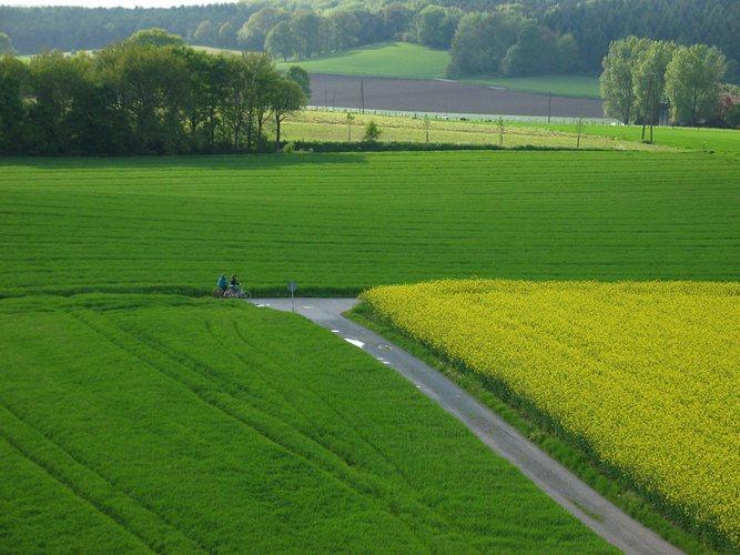 Mit dem Fahrrad durch die Felder