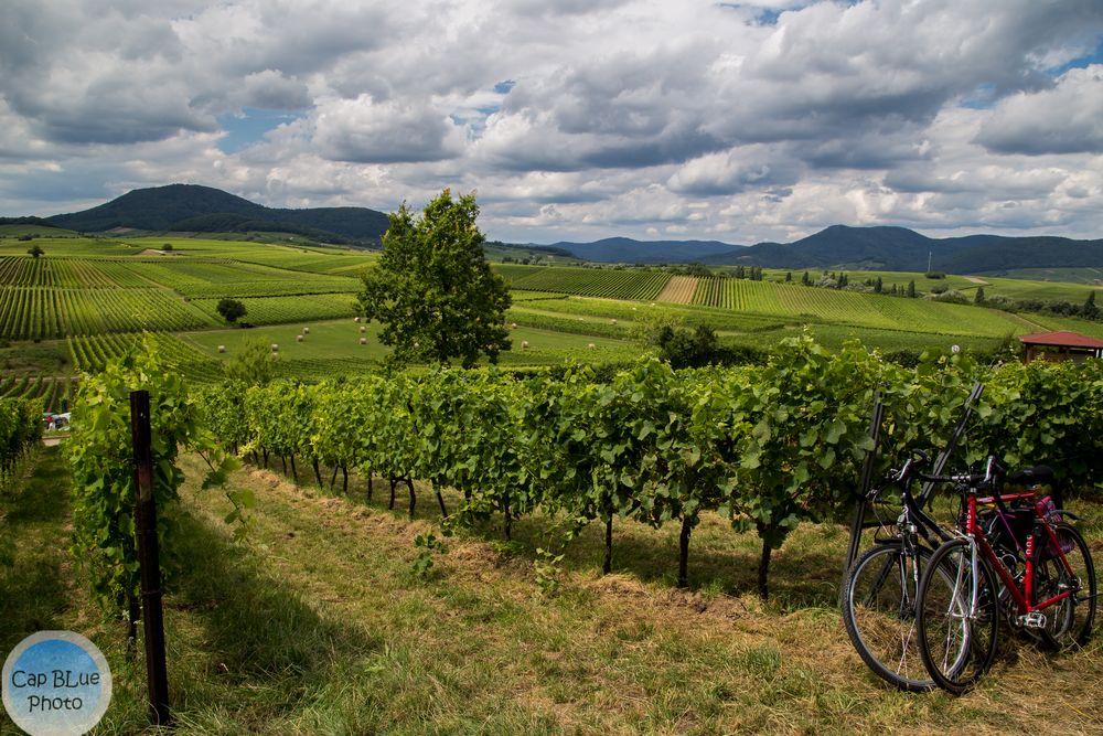 Mit dem Fahrrad zum Kalmitfest im Juli