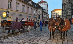 Mit dem Fiaker durch Wien