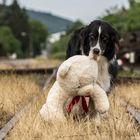 Mit dem Teddy unterwegs (: