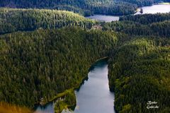 Mit dem Wasserflugzeug über den Misty Fjord VI