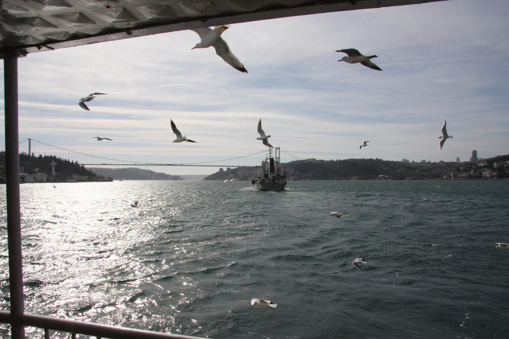 mit den Möwen am Bosporus.......