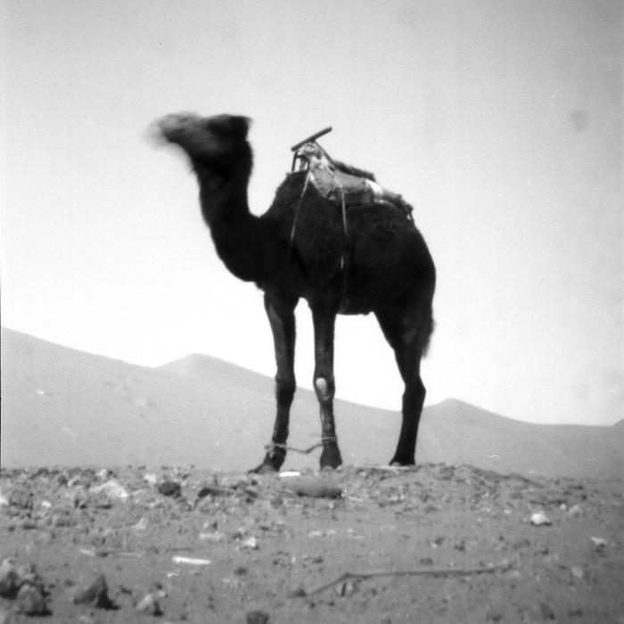 Mit der Agfabox in Marokko [1]