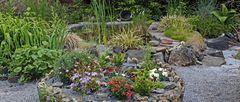 Mit der kleinen Blende alles ordentlich auf dem großen Ausschnitt aus dem Garten