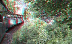 Mit der Waldbahn auf der Fahrt von Bad Muskau nach Weißwasser
