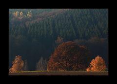 ...mit herbstlichen Grüßen... - oder: Herbst-Echo...