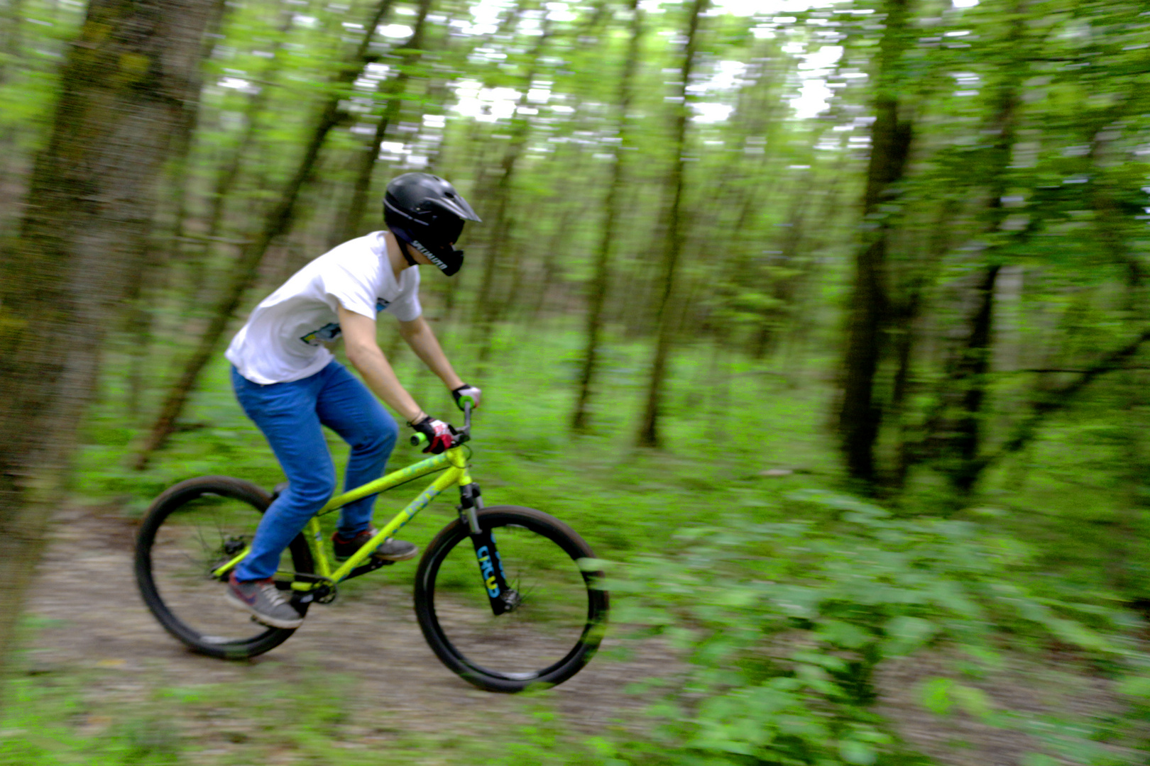 Mit Mountainbike durch den Wald