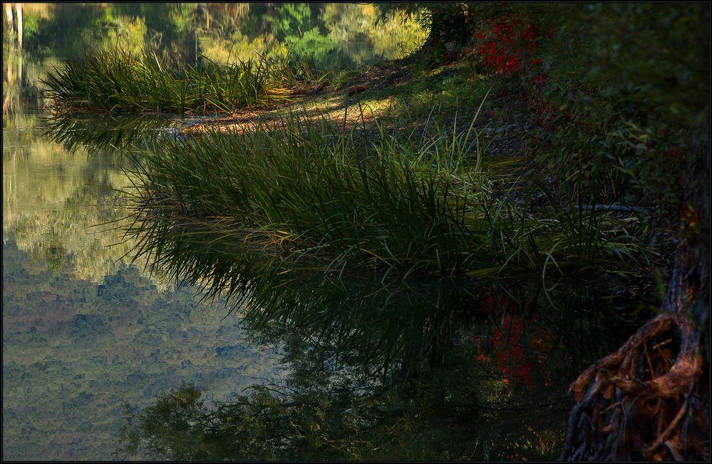 Mit neugierigen Augen am Ufer entlang... (mit Kompositionsanalyse!))