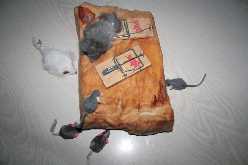 Mit Speck Fängt Man Mäuse Foto Bild Stillleben Arrangierte