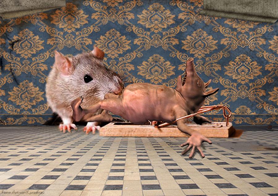 Mit Speck Fängt Man Mäuse Foto Bild Rendering Figuren Digiart