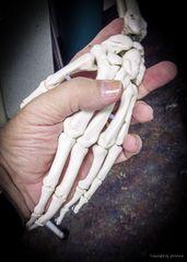 Mit warmer Hand kannst Du mehr für Dich und Andere tun...#1518##
