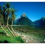 [ Mitre Peak • Milford Sound, South Island ]