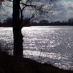 Mittag an der Elbe...