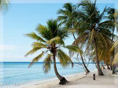 -Mittags am Strand-