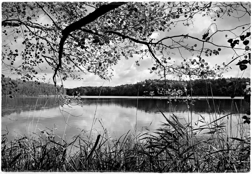 Mittagszeit am Mühlenbecker See