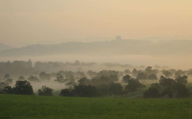 Mittelrhein im Nebel.