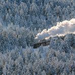 Mitten durch den Winter
