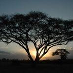 Mitten in Kenia