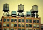 Mitten In New York (2)