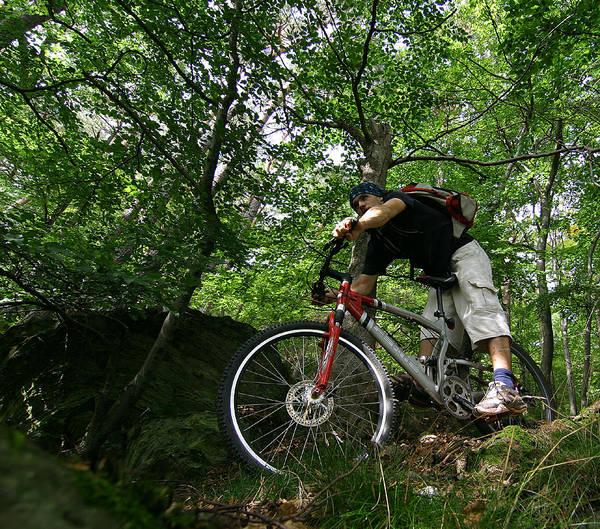 mittendurchdenwaldbiking