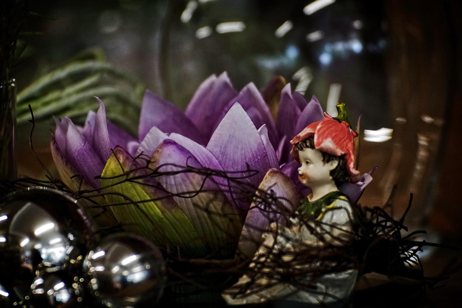 Mittwochs Blumen Märchen