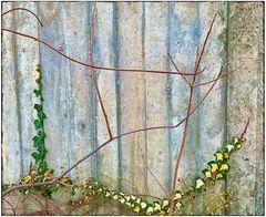 Mittwochsblümchen- The wall