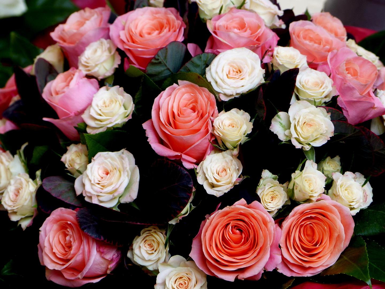 - Mittwochsblümchenstrauss -