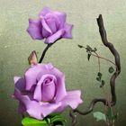 Mitwochsblümchen
