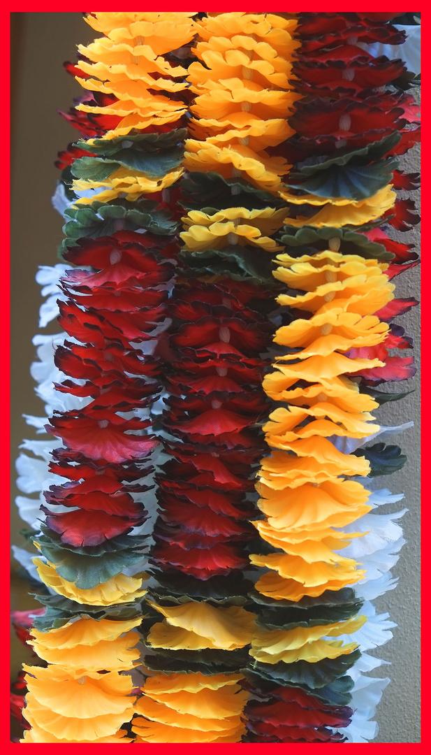 Mix ........Multicolor......