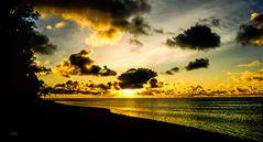 Moana Sands Sunrise