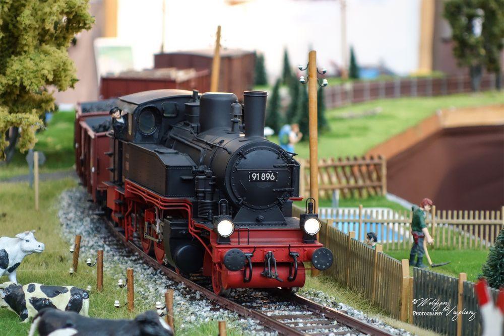 Modelleisenbahn-Ausstellung I Foto & Bild | loks