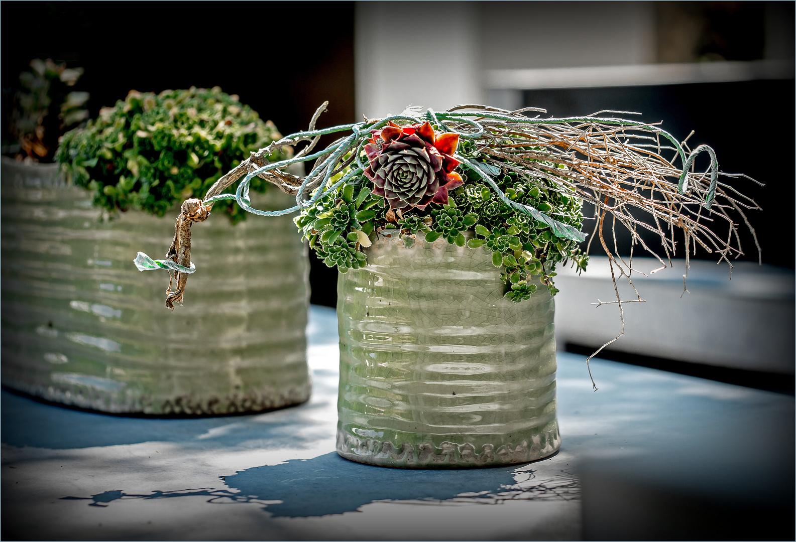Moderne Tischdeko Foto Bild Natur Stillleben Sonstiges Bilder