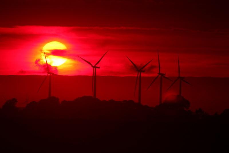 Moderne Windmühlen in der Abendsonne
